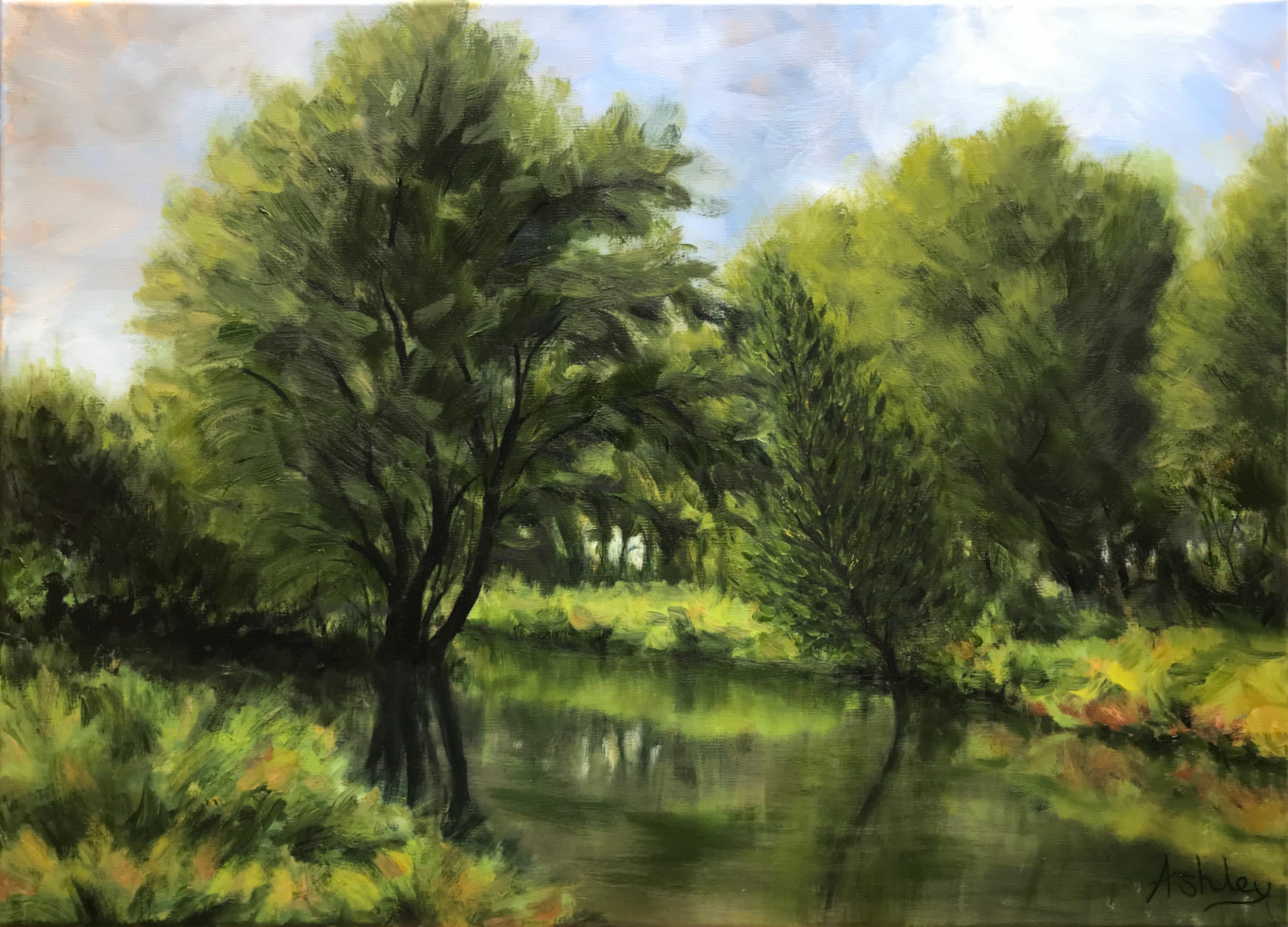 Landscape painting, Byron's Pool nature reserve